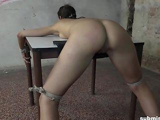 haley wilde porn galleries